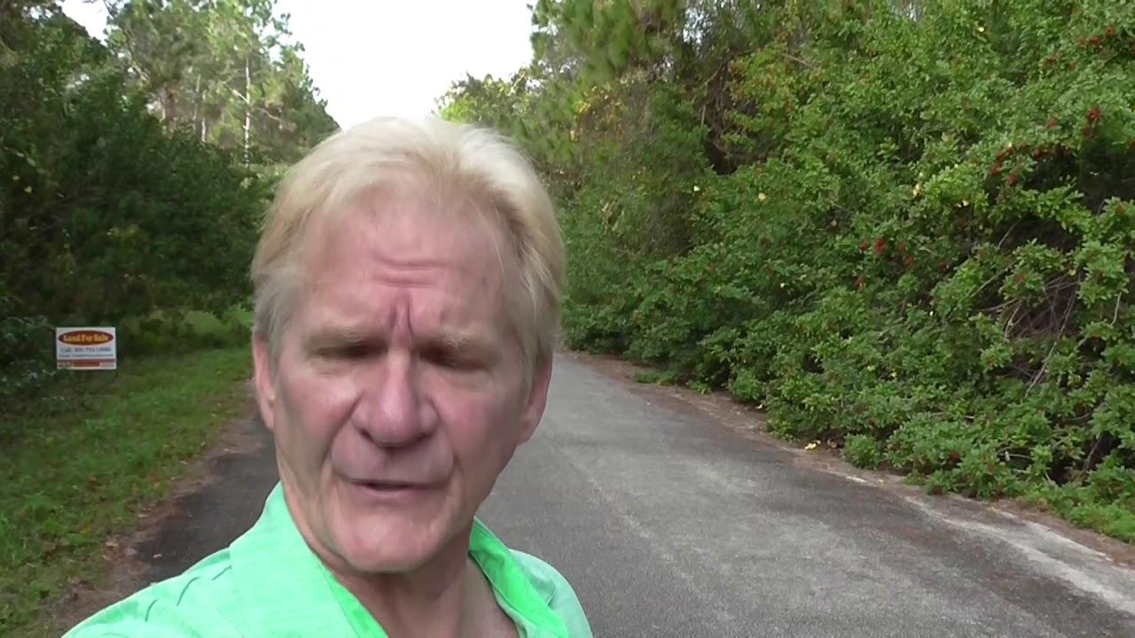 Land For Sale in Florida Owner Financing