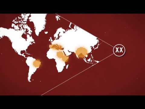 KILLER DISEASES | A History of Leishmaniasis