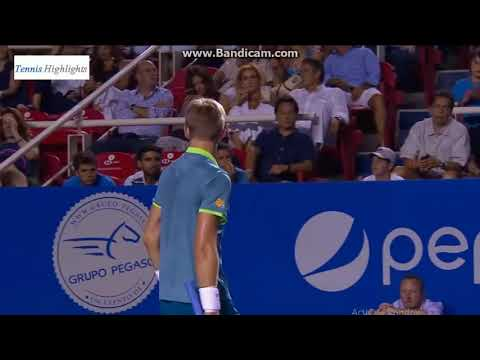 Juan Martin Del Potro Vs Kevin Anderson Atp 500 Acapulco Final (HD Highlights)