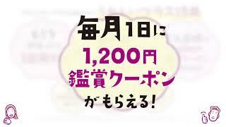 岡山 モニカ レモネード レ