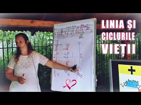 Linia Vietii - Cum Se Construieste! Intreruperea Ciclurilor De Viata Repetitive Negative!