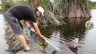 Pescador Pesca Tilapias Grandes de Laguna - Grabado todo en 4K thumbnail