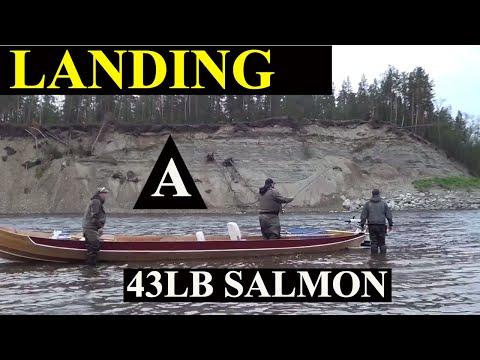 Andy Majerus 43lb Norwegian Salmon Alta River