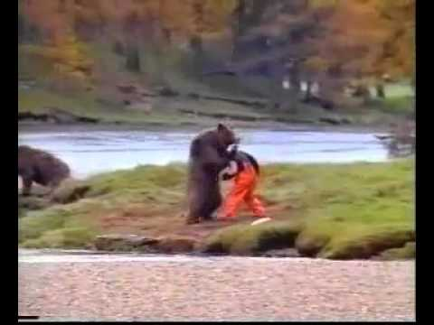 Human Vs Bear Old John West Salmon Commercial Very Funny YouTube - 15 funny bears acting like humans