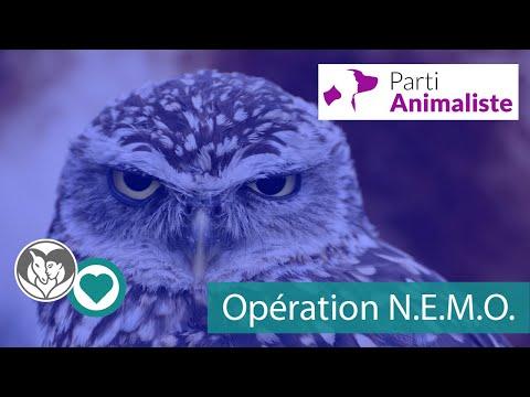 Opération N.E.M.O.
