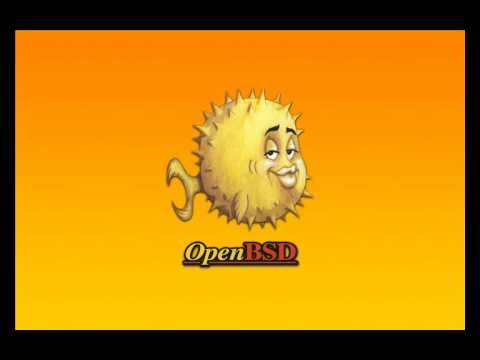 openbsd 4.8