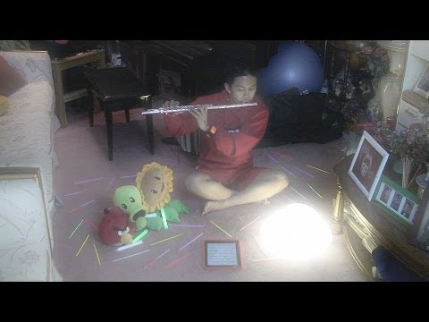 Lindsey Stirling - Song of the Caged Bird (Flute Cover to Original Track by Vincent Gatdula)