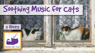 5 Hours of Music for Cats - Relax your Cat with Soothing Music