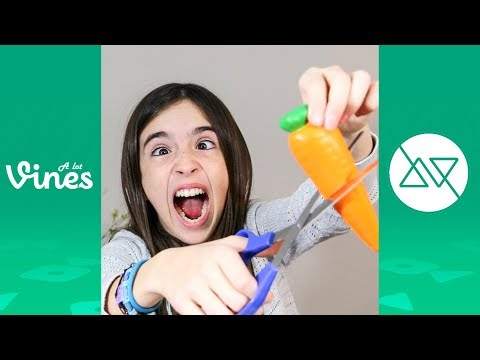 Funny Eh Bee Vine Compilation – Best Eh Bee Family Vines 2013-2017