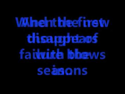 David Nail-Some Things You Just Know w/ lyrics