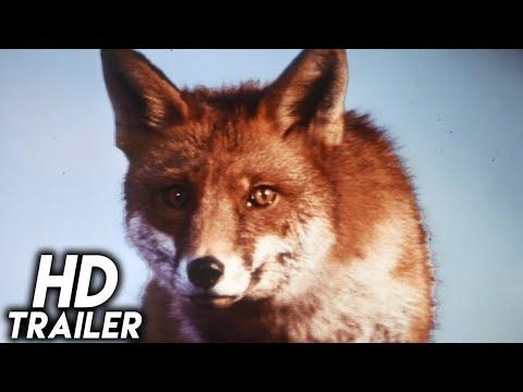 The Belstone Fox (1973) ORIGINAL TRAILER [HD 1080p]