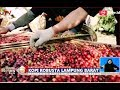Menikmati Kopi Robusta Lampung Barat Langsung dari Kebun - BIS 12/11