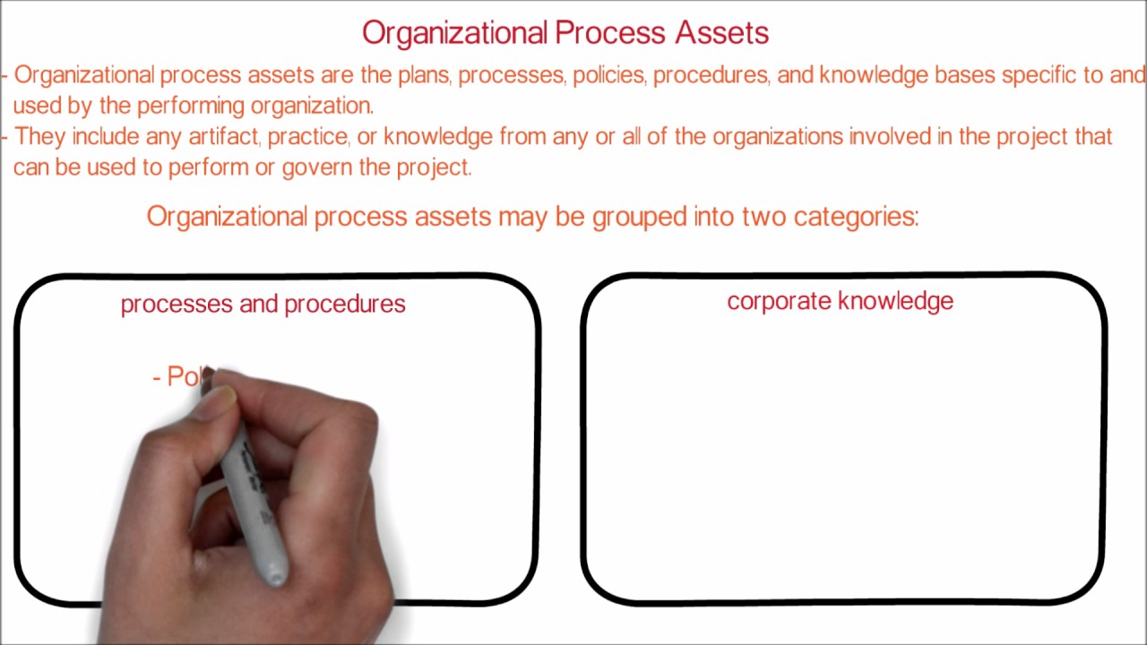 organizational examples