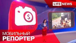 Приложение LifeNews — Топ-5 видео за неделю