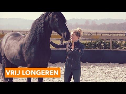 Vrij longeren zonder halster | PaardenpraatTV