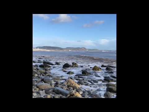 Lyme Regis Fossils
