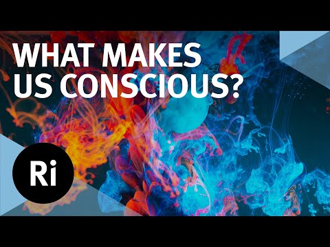 The Source of Consciousness - with Mark Solms