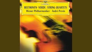 Verdi: String Quartet in E minor - Version for String Orchestra by Arturo Toscanini - 1. Allegro