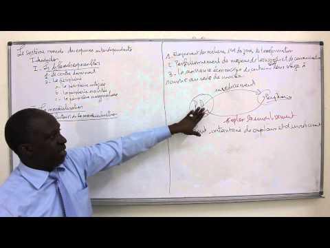 La mondialisation en dissertations corrig  es   G  opolitique   aux     Phd thesis proposal reportz web fc com
