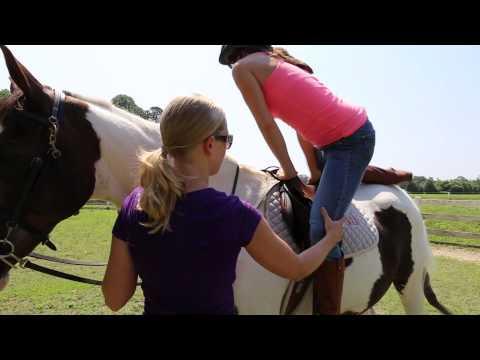 mixer: Teach me to ride a horse