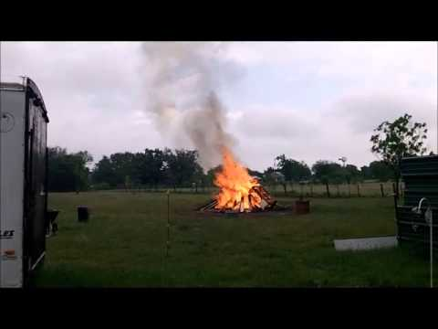 Bonfire of the Chicken Coop