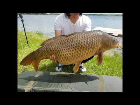 Carp Canada Fishing