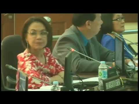 Cebu City Council Session Live Streaming - April 13, 2016