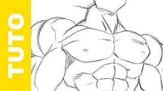 Comment dessiner Dragon Ball Z les muscles de Sangoku