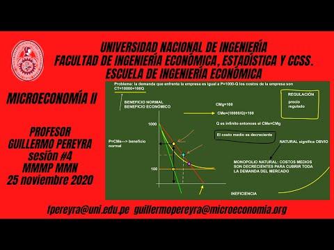 Microeconomía II monopolio multiplanta y monopolio natural