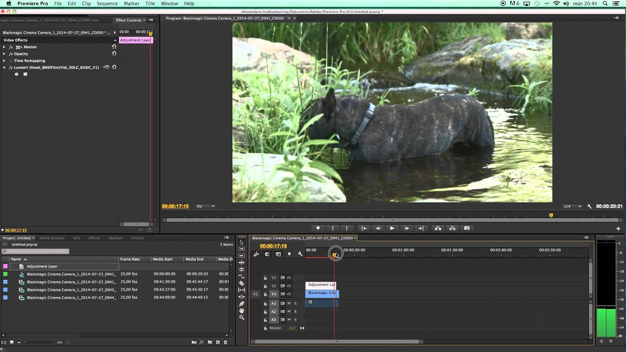 Tutorial - Edit Blackmagic Raw Fast and Easy in Premiere Pro