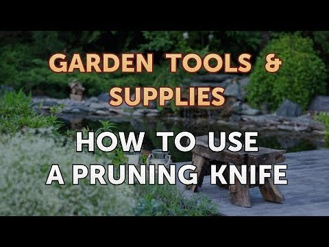 How to Use a Pruning Knife