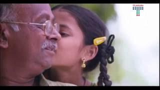 bangaru telangana song new - telangana govt 2 years of celebration song