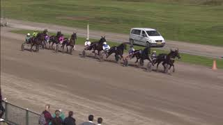 Vidéo de la course PMU PRIX FERRY HOLLANDER