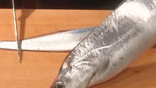 《タチウオ(太刀魚)の捌きと 刺身、焼き物【1】》・・・・大和の 和の料理《捌き》