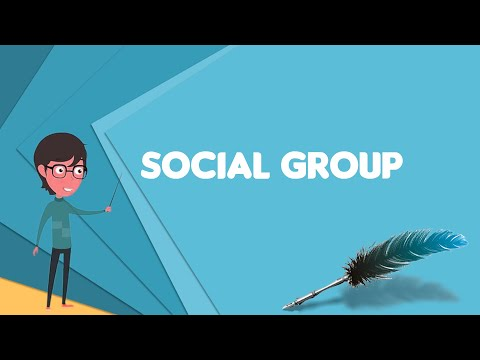 What is Social group? Explain Social group, Define Social group, Meaning of Social group