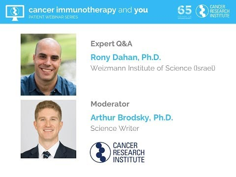 Antibody-Based Therapies: Taking a BiTE Out of Cancer