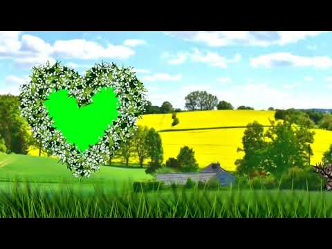 Green screen wedding effect by love is all bm thumbnail