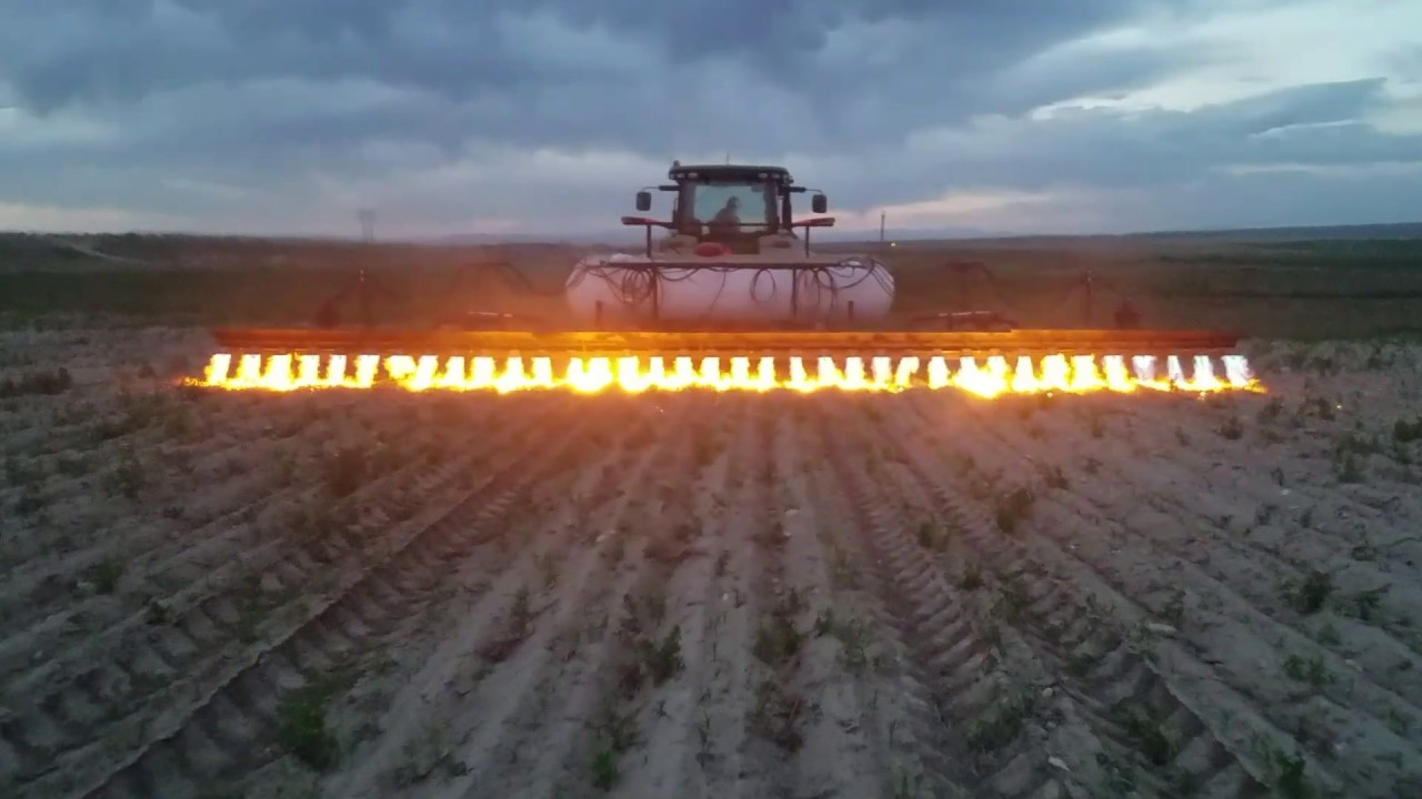 Tratores adaptados com chamas são a nova técnica para acabar com o uso pesticidas