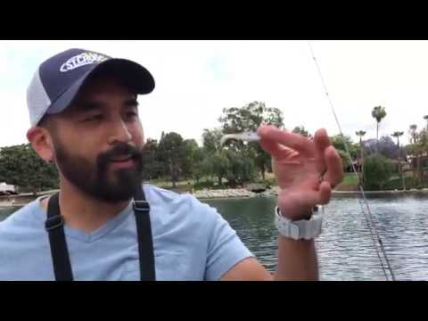 BASS FISHING AT EISENHOWER PARK IN ORANGE, CA