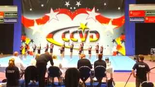 CCVD DM 2015: Little Wildcats (Pee Wee Level 2)
