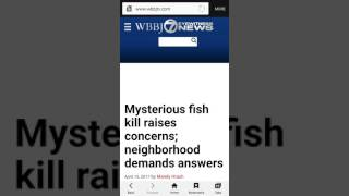 MYSTERIOUS FISH FOUND DEAD IN JACKSON, TENNESSEE!