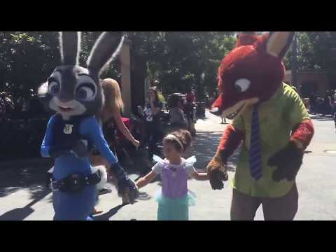 A Special Star walk with Zootopia