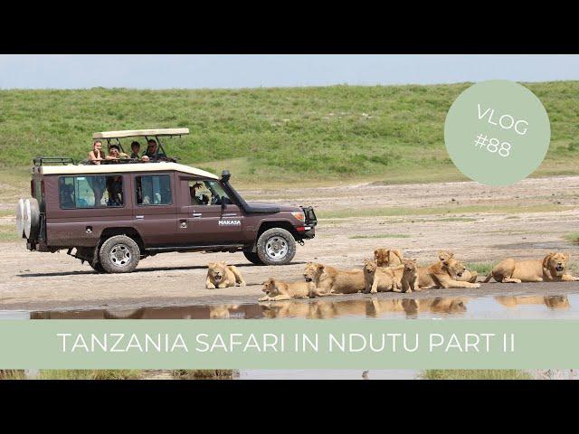 Our Tanzania Safari in Ndutu South Serengeti Part 2 | Makasa Tanzania Safari ǀ VLOG #88