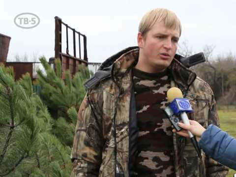 Видеозапись Продажа Новогодних елок в Мелитополе