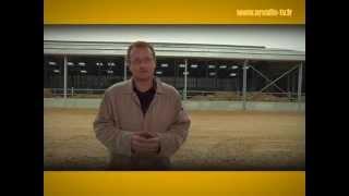Présentation du bâtiment expérimental d'engraissement de jeunes bovins - ARVALIS-infos.fr