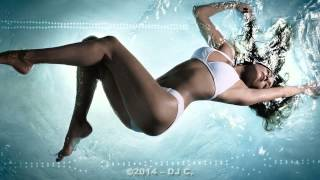 Electro House & Dance Mix - August 2014