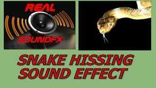 Snake hissing sound effect -  realsoundFX