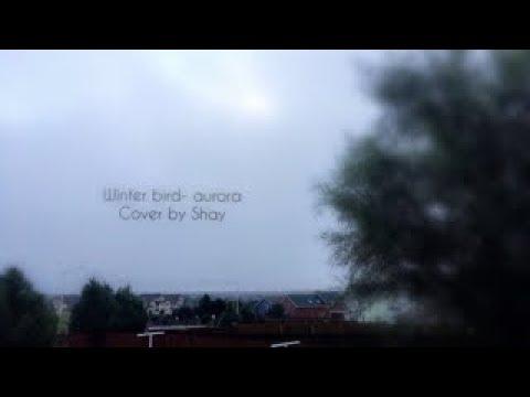 Winter Bird -Aurora (cover)