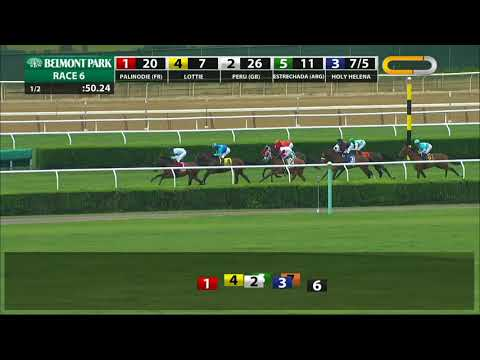 Holy Helena - 2018 - The Sheepshead Bay Stakes