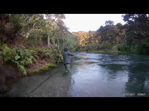 Waitahanui Fishing